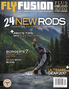 FF Cover V14I1 MASTER back issue