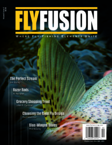 Fly Fusion Mag Vol 6 Iss 2