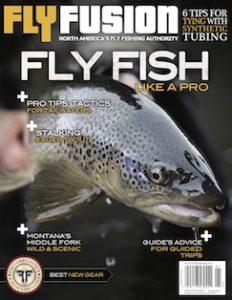 FF Cover V16I1 web